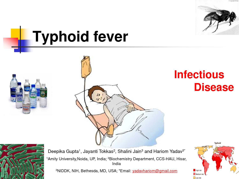 Typhoid fever Nursing InterventionsNursing File | Nursing File
